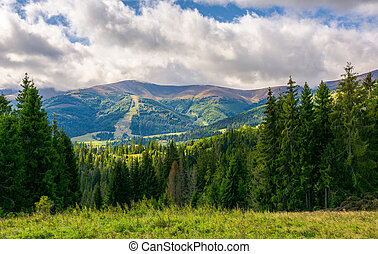 beautiful landscape with forested hills. autumn landscape in...