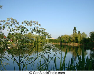 Beautiful landscape with lake. Clear sky