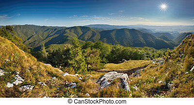 Beautiful Landscape  with mountain and forest at sunrise, Slovakia Fatra
