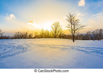 Beautiful landscape with mountain around tree in snow winter...
