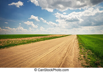 Beautiful landscape with road, green fields and blue cloudy sky