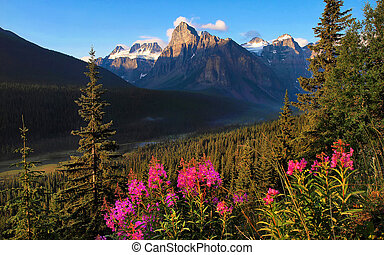 Beautiful landscape with Rocky Mountains at sunset, Banff...