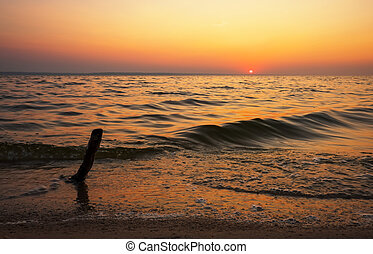 Beautiful landscape with sea, sunset and driftwood. Composition of nature