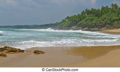 sea waves on tropical beach and coconut palms