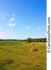 Beautiful landscape with stacks of straw