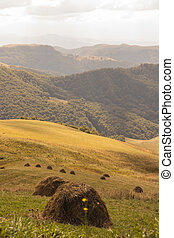 Beautiful landscape with straw bales in the autumn in mountains