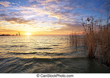 Beautiful landscape with the reservoir, reeds, sunset sky and po