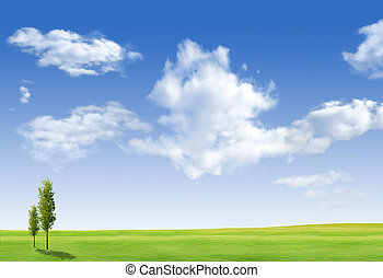 Beautiful landscape with tree,  grass green field and blue sky