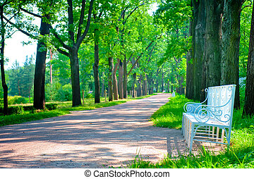 beautiful landscaped park summer day