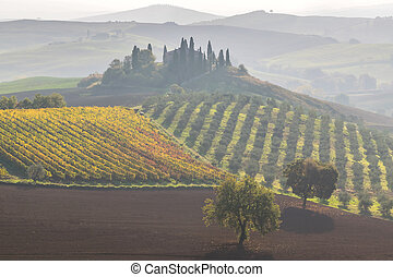 Beautiful landscapes of Tuscany
