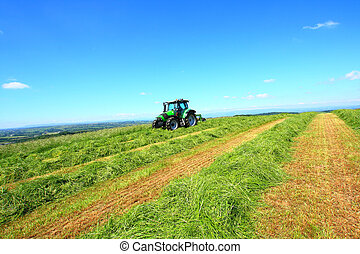 Haymaking in Sotland - Beautiful lansdscape with Haymaking...
