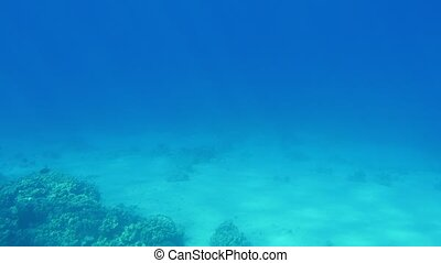 Beautiful light blue water with a sparkling surface in the...