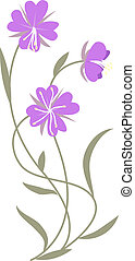 lilac flowers - Beautiful lilac flowers isolated on white....
