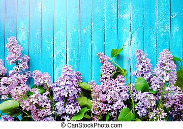 Beautiful lilac on a blue wooden background