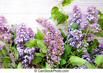 Beautiful lilac on a white wooden background