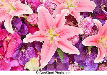 Beautiful lily and orchid flowers background