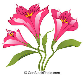 Beautiful Lily design element