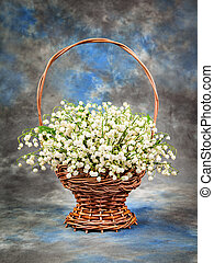 Beautiful  lily of the valley in a basket on the table