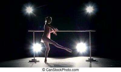 Beautiful little ballerina dancer on the dance floor -...