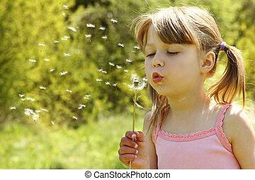 beautiful little girl blowing on a dandelion - a beautiful...
