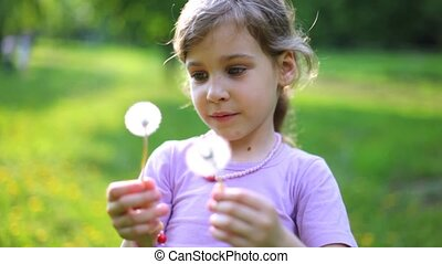 Beautiful little girl plays on green lawn with dandelions