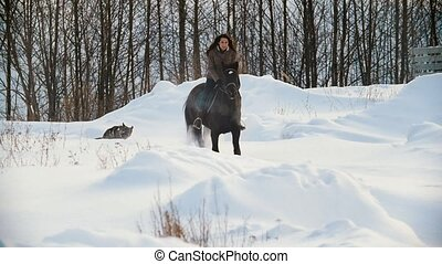 Beautiful longhaired female rider riding a black horse...
