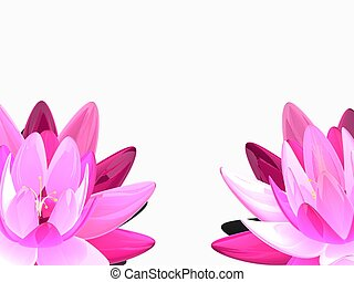 beautiful lotus - 3d rendered illustration of some colorful...