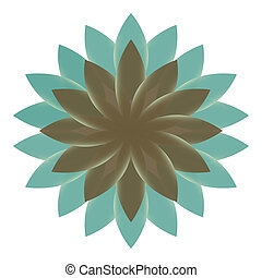 Beautiful Lotus Flower Color Whee