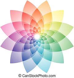 Lotus Flower Color Wheel - Beautiful Lotus Flower Color...