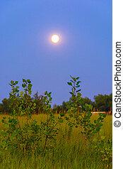 Beautiful lunar landscape.