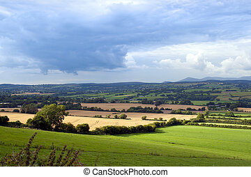 green lush farmland fields and countryside of Ireland