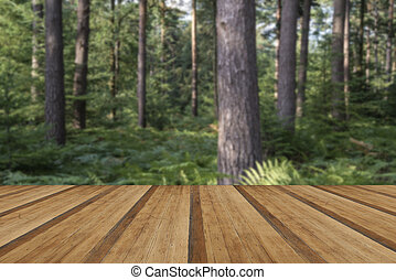 Beautiful lush vibrant forest landscape in Summer with wooden pl