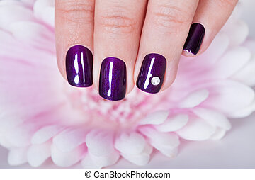 Beautiful manicured nails with purple nail varnish and a...