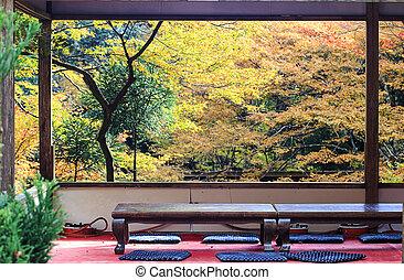 Beautiful maple window view