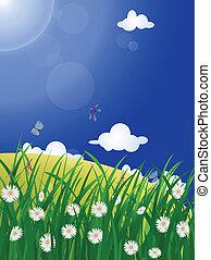beautiful meadow