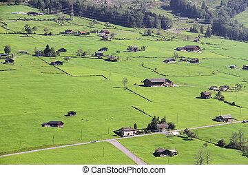 Beautiful meadows in the Swiss Alps, Switzerland