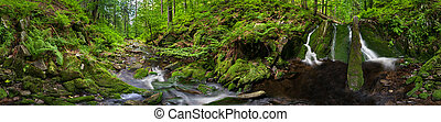 Panoramic view of a beautiful creek meander, 360 degree panorama.