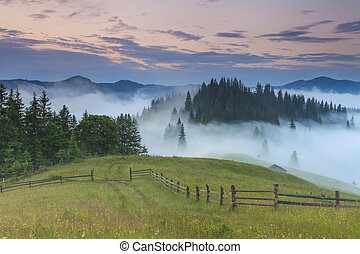 Beautiful misty dawn in the mountains. Carpathian Mountains. Ukr