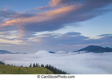 Beautiful misty dawn