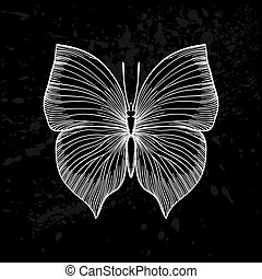beautiful monochrome black and white butterfly.