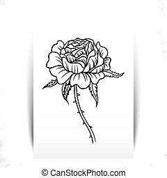 beautiful monochrome black and white rose flover isolated on...