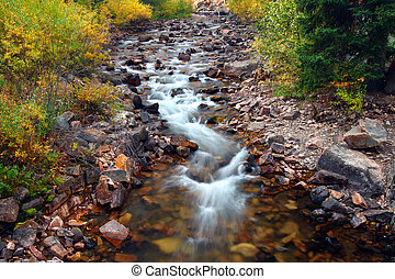 Beautiful Montana Stream Scene