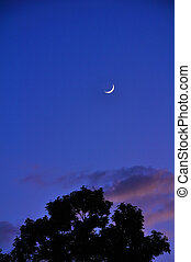 Beautiful moon & sky silhouette