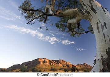 Beautiful Morning 1 - Morning view shot at Flinders Ranges