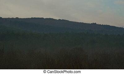 Beautiful Morning Foggy Mist Forest At Sunrise, Timelapse