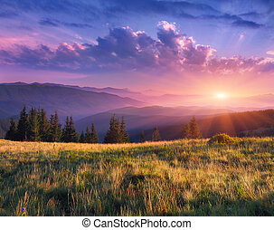 Beautiful morning landscape in the mountains