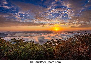 Beautiful morning mist at sunrise in South Korea.