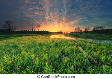 Beautiful morning sunrise