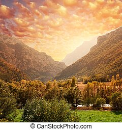 Beautiful mountain forest landscape against sky.