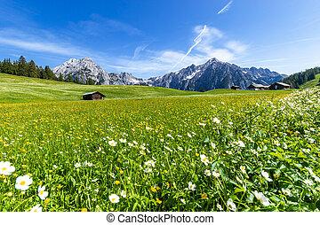 Beautiful mountain landscape in Alps, Austria, Walderalm.